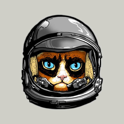 "Grumpy Cat needs space! Grumpy Cat has had enough on this planet, he's ready for lift off to the moon or somewhere less happy.  ""People on Earth are much too happy, I'm going to places where nothing lives, not even cats with 9 lives"""