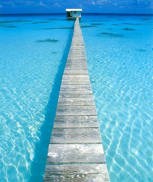 SUMMER on We Heart It - http://weheartit.com/entry/30799387/via/Maria_Paris   Hearted from: https://www.facebook.com/photo.php?fbid=243554209069806&set=a.228354380589789.51659.107905222634706&type=3&theater