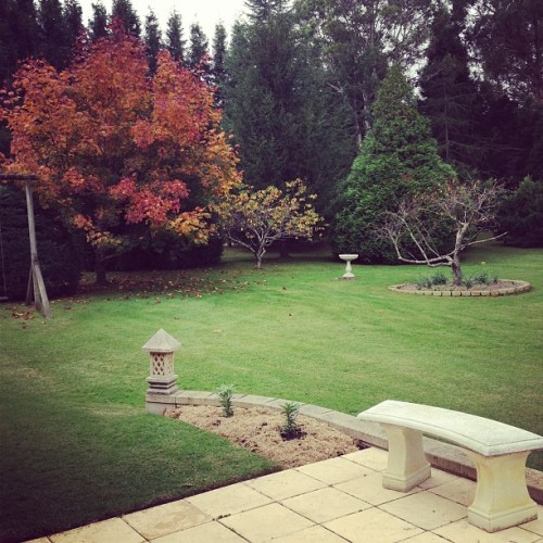 It's so beautiful in the southern highlands! They actually have seasons. It's been down to 3 degrees though! We have the fire going 🍁❄ (at Bowral)