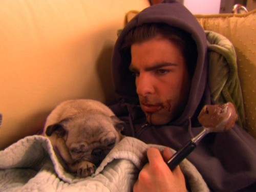 menandtheirdogs:  broadwaymenwithdogs: ishowerwithcats:   Zachary Quinto + doggie + ice cream = the perfect photo