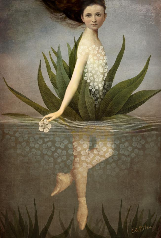 "artisticmoods:  ""Waterlily"". New digital artwork by Catrin Welz-Stein."