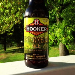 Grilled steak and #hookerwatermelonale. #beer #craftbeer #hookerbeer #hookerbrewery #hookerwatermelon #usnstagram #instagood #ig #staythick by davecmoc http://bit.ly/17iO8OE