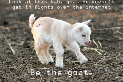 newsweek:  Be the goat.