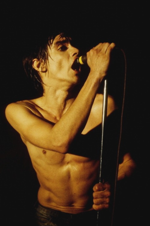 superseventies:  Iggy Pop photographed by Larry Hulst.