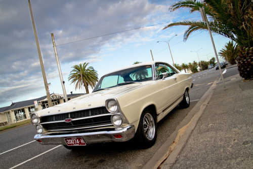 Breakfast Stroll Starring: Ford Fairlane GT (by evvvvan)
