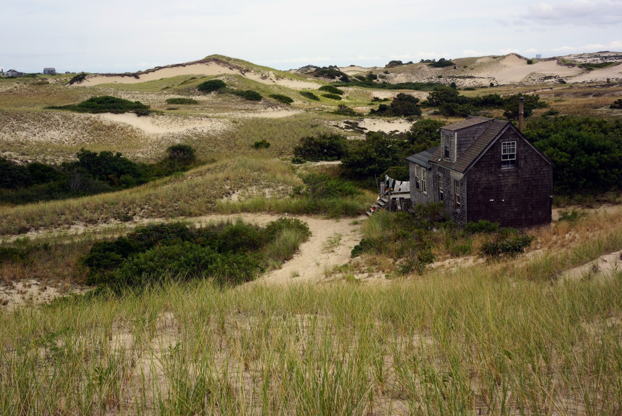 cabinporn:  The Dune Shacks of Peaked Bars Historic District. From The Provincetown Design Group:  Nestled into the ever-shifting shapes of the Province Lands dunes, they are primitive in structure, but surrounded by a rare sort of richness – the mesmerizing environment of the ever-changing dunes, great undulations of sand that are constantly swept by the ocean's winds into new shapes and that have long been a place of withdrawal for artists, eccentrics, writers and Cape residents.  Since the mid 1990s, area non-profits have offered solitude in the dunes to writers, artists, scientists, historians, musicians, and dancers through summer and fall shack residency programs. Photos by Chris Seufert, Paul Neumann, Debra Bacon, and Stephanie Foster.  Sara we need to do this, like for reals.