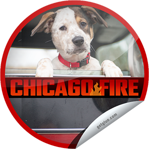 I just unlocked the Chicago Fire: Let Her Go sticker on GetGlue                      3327 others have also unlocked the Chicago Fire: Let Her Go sticker on GetGlue.com                  How does Molly's grand opening go? Thanks for watching Chicago Fire tonight. Keep tuning in on Wednesdays at 10/9c on NBC. Share this one proudly. It's from our friends at NBC.
