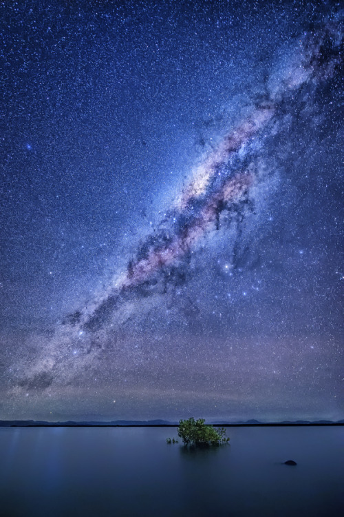 wonderous-world:  Insomnia Wilson Beach by Jay Daley