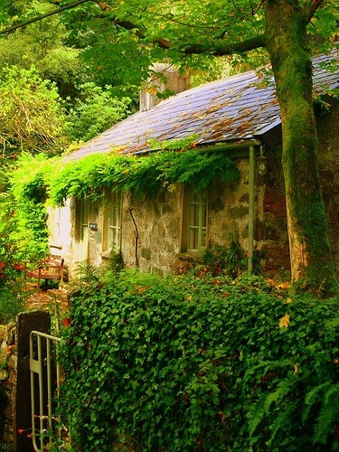 bluepueblo:  Ancient  Welsh Cottage, Fachwen, North Wales photo via jillian