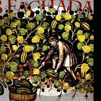 'Tempo Para Cantar' by B Fachada is my new jam.
