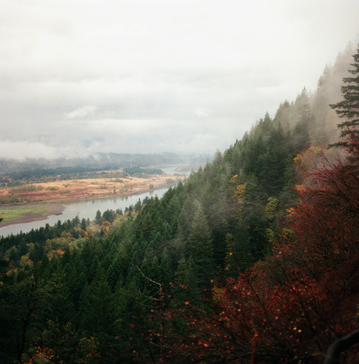 thenakedbrowneye:  the gorge (by katez0r)
