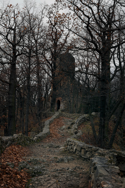 bluepueblo:  Ancient Castle,  Walbrzych, Poland photo via emilie