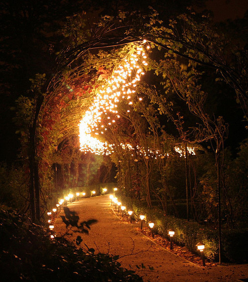 Love Lights the Way … It is Never Lost … Love is a force; it is the perfect emanation of good as defined by God. No love is ever lost. If you put love into the world, it is absorbed by someone, or something, that can use it. Love also has a way of coming back to you, although you may not see it. Love will always hit the mark; yet even though people can choose to ignore it, it always leaves an impression.