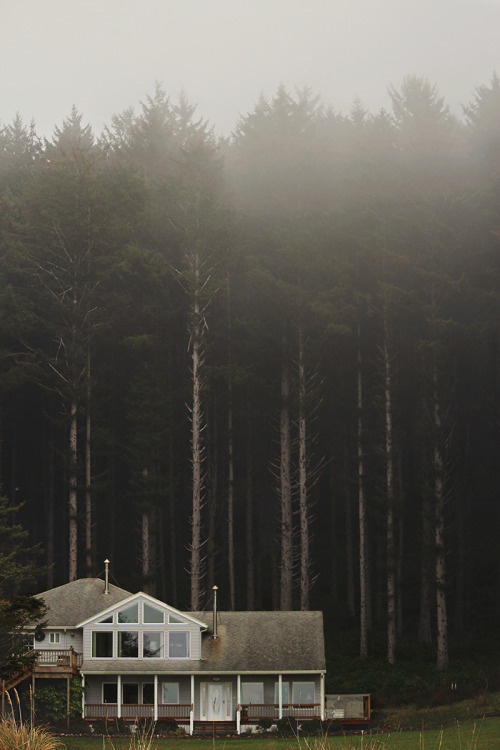 theseashelltales:  Can this be my house, please?