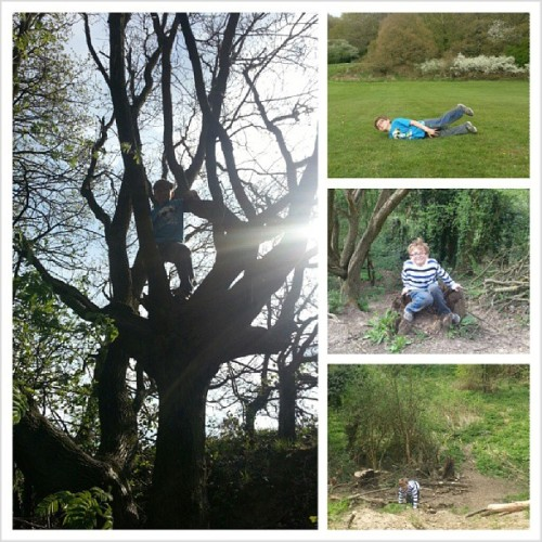 It was a #hillrolling, #dell & #treeclimbing kinda day. #Zane #boy #son #fun #play #woods #park #outside