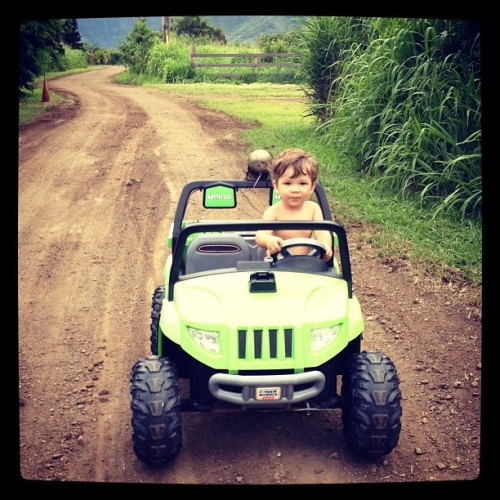 Life is grand living at the farm in Oahu, Hawaii. Dylan hanging with Henry, and Stacie