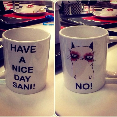 Best mug eveeer! That's so me xD Thanks Kick 💙 #grumpycat #tardthegrumpycat