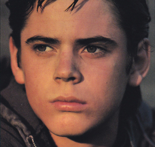 What Page Number Is The Quote Stay Gold Ponyboy On: I Heart The Outsiders