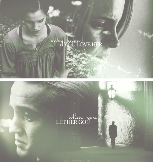 wandlesstribute:  and you let her go