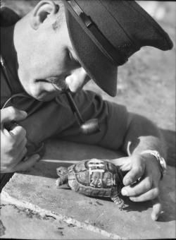 Captain D Michelson of the 2/2nd Battalion with a turtle named Tim.