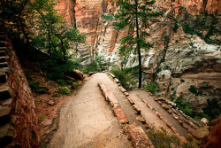 Switchback ♦ Walter's Wiggles, Zion National Park, Utah | by Steph Goralnick