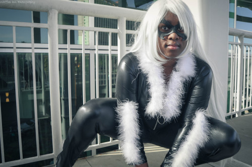 comicbookcosplay:  Black Cat at Megacon 2013 Photographer: Waffles Inc Photography Facebook: facebook.com/MystoriCosplay DeviantArt: yoruichi213.deviantart.com Submitted by r3almellow