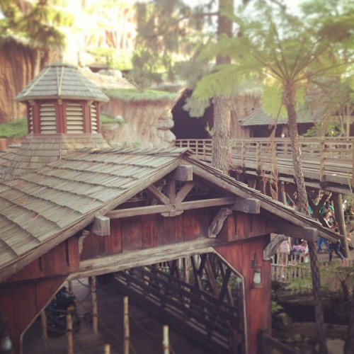 My home #critterCountry #disneyland #disney