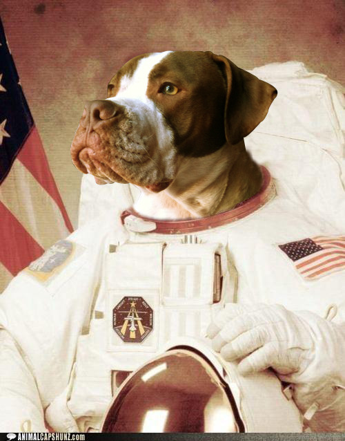 Hey dog, let's go to the Moon.