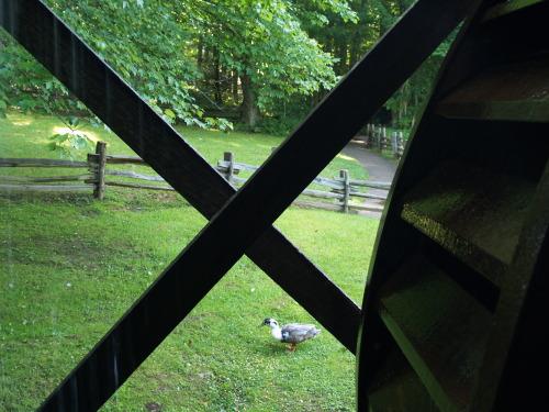 Mabry Mill: Wheel &Duck