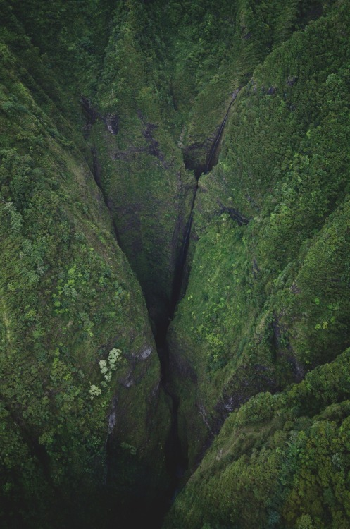 teapalm:  Say hello to the tallest waterfall on Oahu.