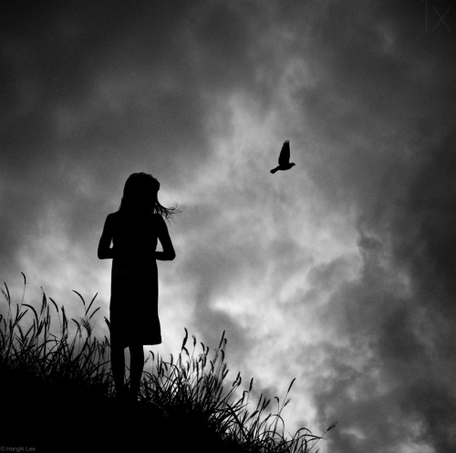 thesensualstarfish:  By Hengki Lee