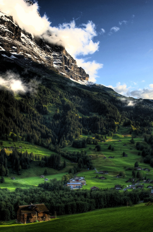 periderm:  Grindelwald homes (by Ed Coyle Photography)