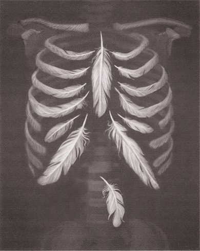 always-a-wanderer:  Delicate bones, feather weight heart