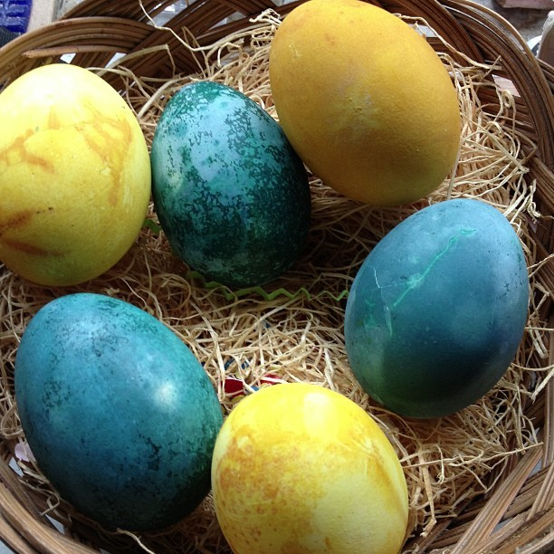 Cabbage & tumeric dyed eggs — you have to leave them in the dye bath overnight