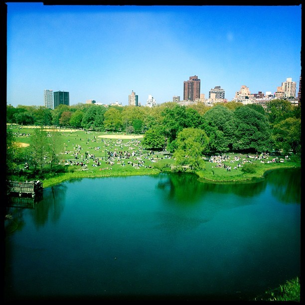 Turtle Pond (at Belvedere Castle)
