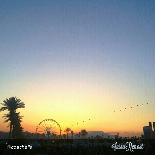 #coachella #festival #2013 #california #bucketlist