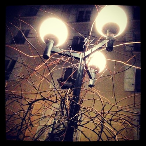 #light t(h)ree (at Paris)