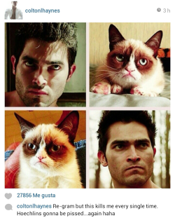 Can we just talk about Colton Haynes Instagraming this?… :)