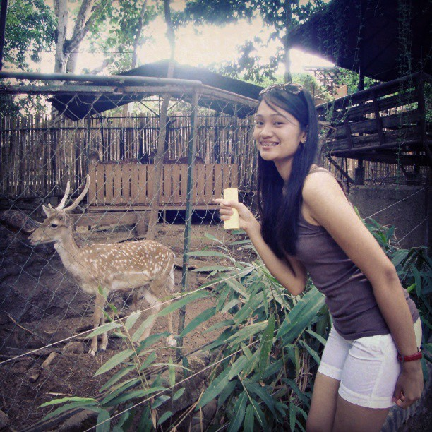 "Dearest,Deer… :""> yes I saw a deer :) #Zoobic"