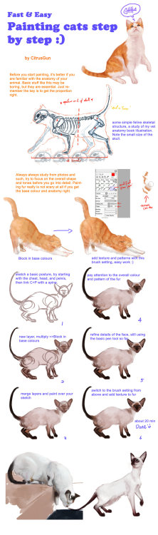 art-and-sterf:  Painting cats tutorial by *CitrusGun