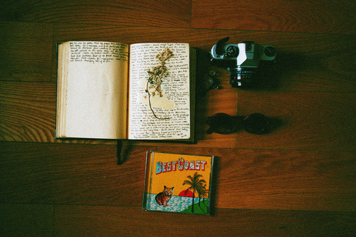 cajuns:  (by stefanyalves)   The simple items it takes to make an adventure.