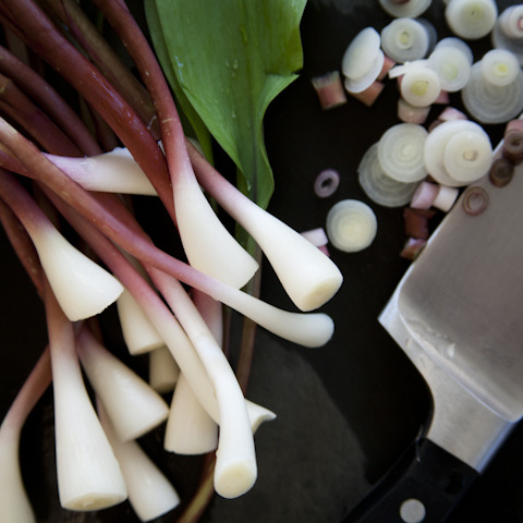 ramps destined for quiche