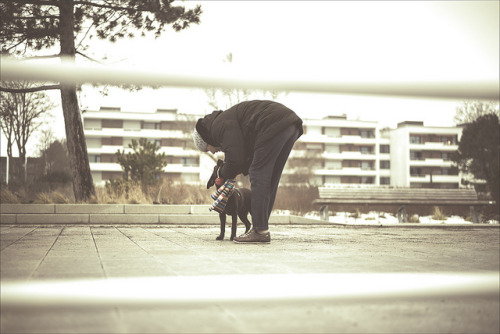 a man's best friend. by MadMats22765 on Flickr.
