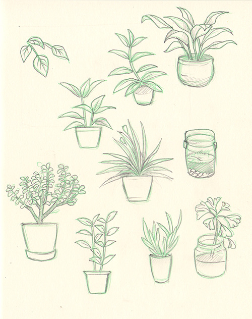 Tumblr Drawings Plants When in Doubt Draw Plants