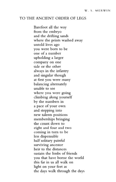 poetrysince1912:  —W.S. Merwin, Poetry, March 2004Today is Merwin's 86th birthday.