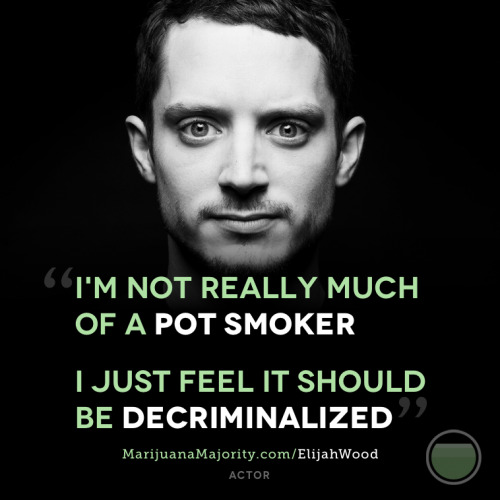 "aero-zepplin:  marijuanamajority:  More and more prominent people are speaking out for the need to change our failed marijuana laws. Check out http://MarijuanaMajority.com to see full quotes from these folks and many others.  i love seeing professionally presented and sophisticated things like this, some pro cannabis propaganda is just cringe worthy, you look at it and its just like ""well yea that's why it hasn't been legalised yet"" i like the sounds of sit ins and actual protests about it though, that would turn some heads"