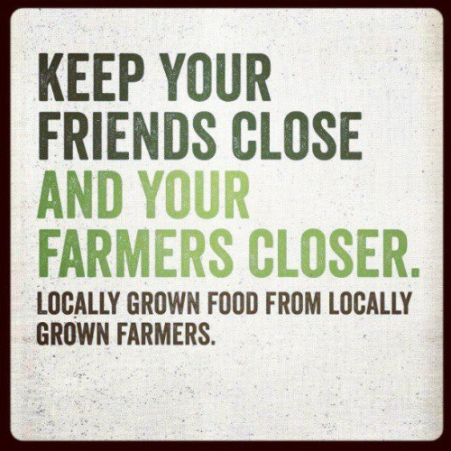 Borrowed from a WWOOF post. (World Wide Opportunities on Organic Farms, USA)