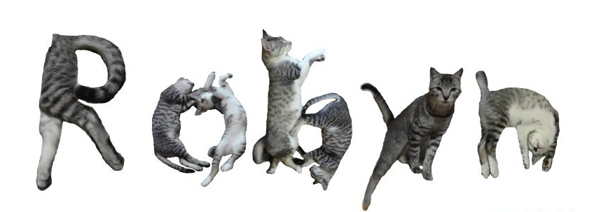 Write your name in cats. Thanks, @katiesol.