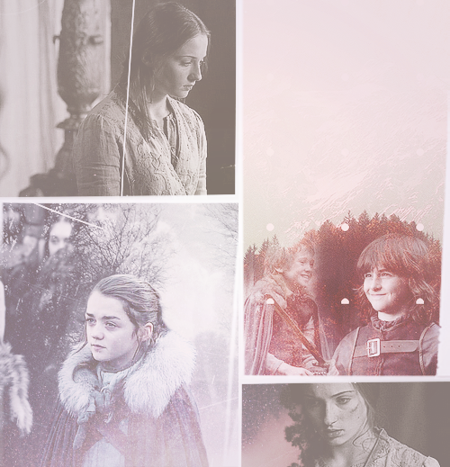 In Sansa's dreams, her children looked just like the brothers she had lost. Sometimes there was even a girl who looked like Arya.