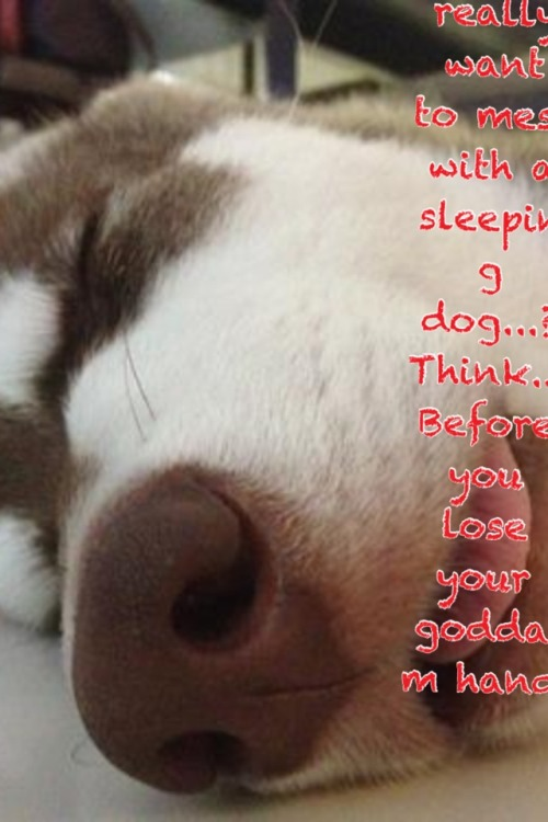 Do yew really want to mess with a sleeping dog…? Think… Before you lose your goddam hand